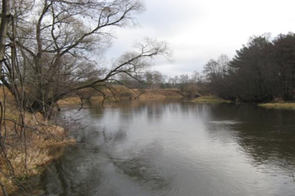 Zdjęcie przedstawiające rzekę Wkrę